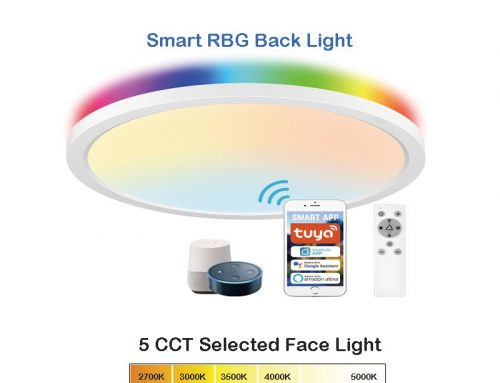 Round Ceiling Light LED w/ 5 CCT Selected & RGB Backlight